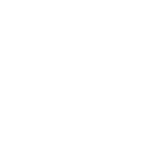 THE PROMO COLLECTIVE